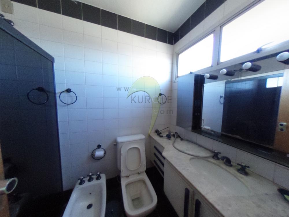 Alugar Apartamento / Padrao em Pradópolis R$ 350,00 - Foto 70