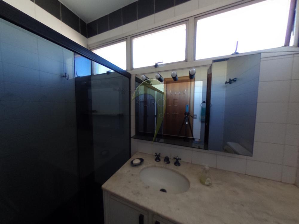 Alugar Apartamento / Padrao em Pradópolis R$ 350,00 - Foto 76