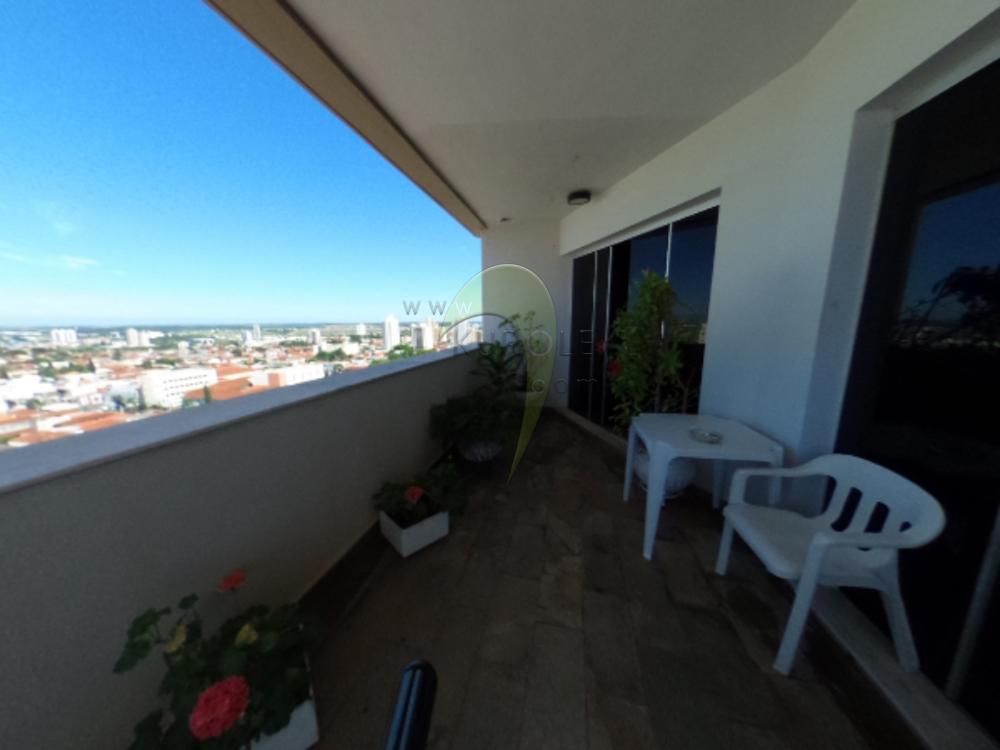 Alugar Apartamento / Padrao em Pradópolis R$ 350,00 - Foto 84