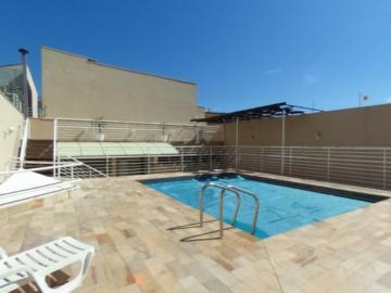 Alugar Apartamento / Padrao em Pradópolis R$ 350,00 - Foto 64
