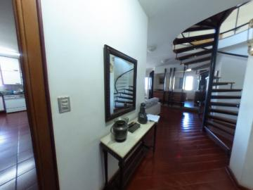 Alugar Apartamento / Padrao em Pradópolis R$ 350,00 - Foto 78