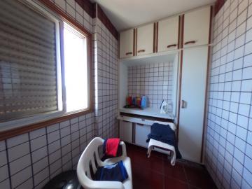 Alugar Apartamento / Padrao em Pradópolis R$ 350,00 - Foto 82