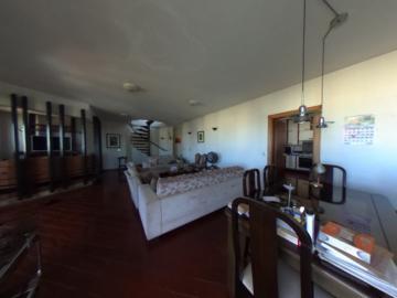 Alugar Apartamento / Padrao em Pradópolis R$ 350,00 - Foto 83